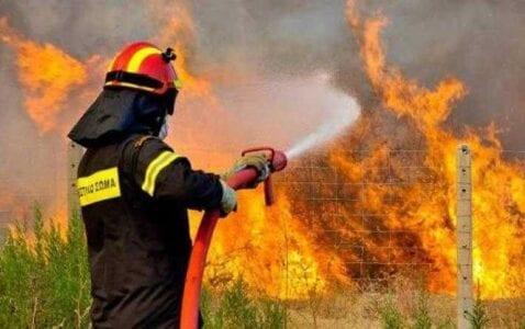 «Λήψη Έκτακτων Μέτρων λόγω Κατηγορίας Κινδύνου επιπέδου 4 (πολύ υψηλή) προς αποφυγή εκδήλωσης και εξάπλωσης δασικών πυρκαγιών στην Περιφέρεια Δυτικής Μακεδονίας