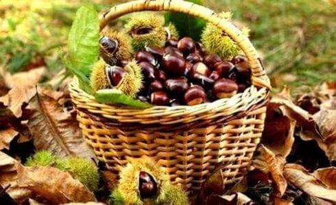 8η Γιορτή Κάστανου, στο Εμπόριο Εορδαίας 1
