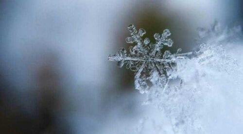 Καιρός:  Στους -14 βαθμούς η θερμοκρασία στη Δυτική Μακεδονία! 2
