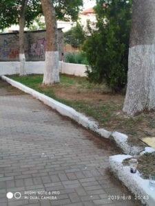 Mας άρεσε!! Εθελοντές αναμόρφωσαν το πάρκο επί της οδού Μεσουπόλεως στην Πτολεμαΐδα!! (φωτογραφίες) 63