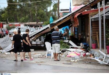 Μετρά τις πληγές της η Χαλκιδική - Μάχη για την αποκατάσταση των ζημιών 3