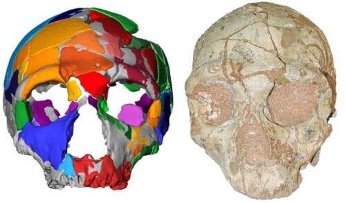 Σπουδαία ανακάλυψη: Το αρχαιότερο δείγμα Homo Sapiens είναι ελληνικό! 3