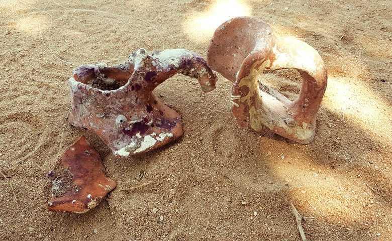 """Ξάνθη: Ανακάλυψαν αρχαίο """"θησαυρό"""" στη θάλασσα 5"""