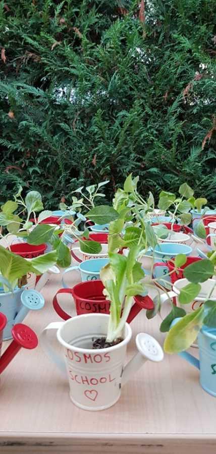 Πτολεμαΐδα: Την Παγκόσμια Ημέρα Διατροφής κι Επισιτισμού γιόρτασαν στο Κέντρο Ξένων Γλωσσών'' COSMOS'' (φωτογραφίες) 40