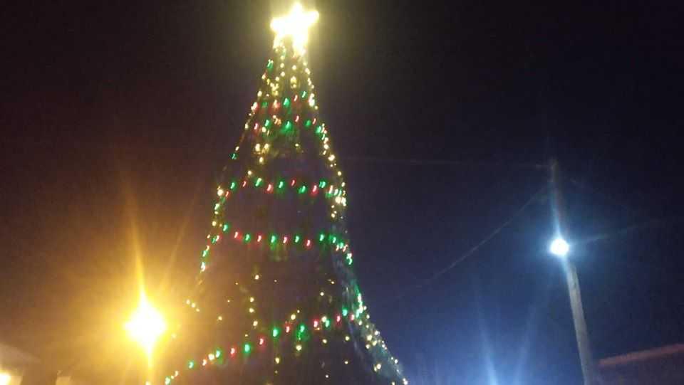 Σε γιορτή μετατράπηκε η φωταγώγηση του Χριστουγεννιάτικου Δέντρου στην Αναρράχη (ΦΩΤΟ) 26