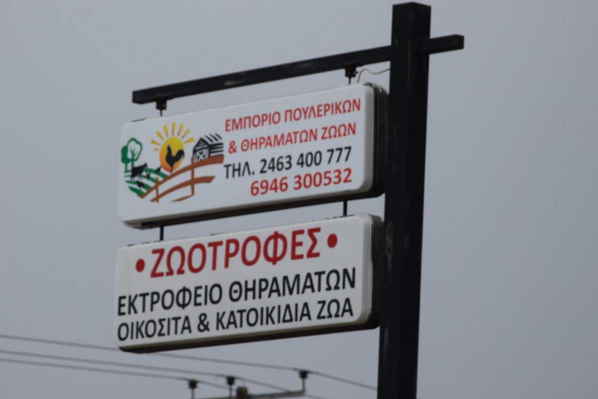 πτολεμαΐδα: επιχείρηση εκτροφείο θηραμάτων της χρυσούλας πεντίδου - το μοναδικό εκτροφείο στην περιοχή ! (φωτογραφίες) 50