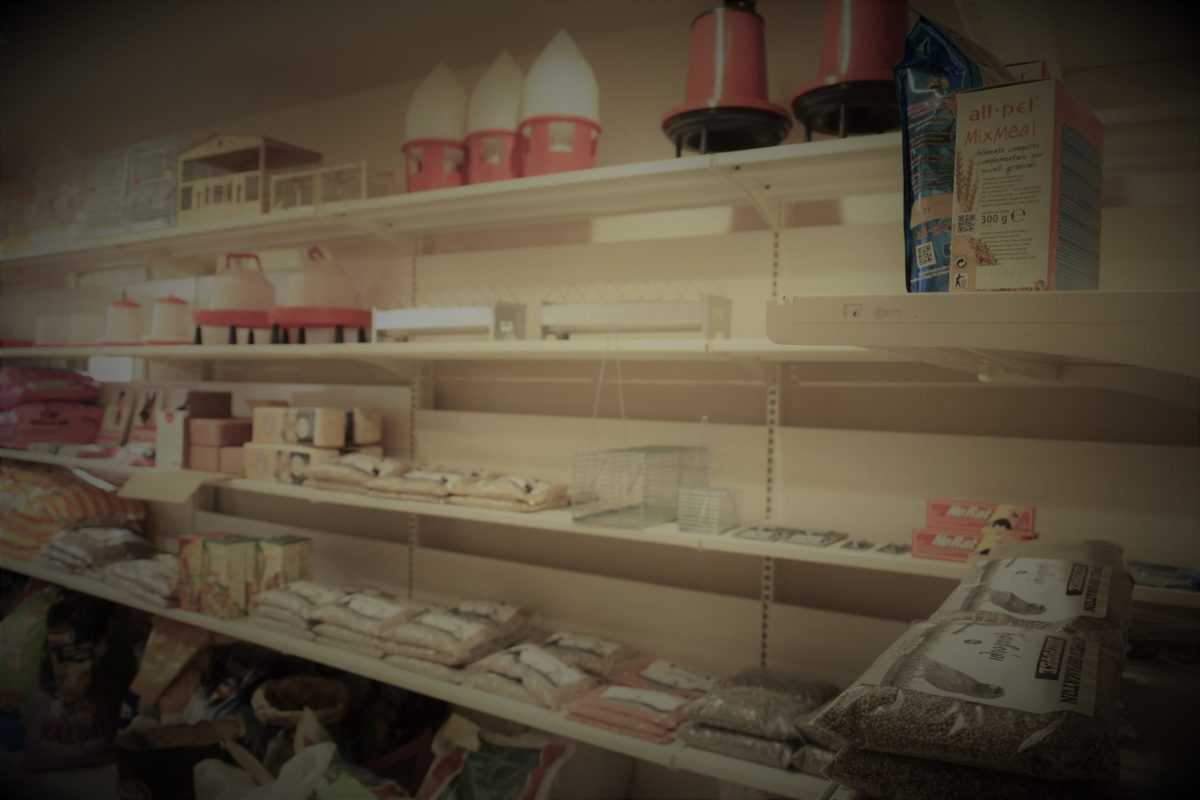 Πτολεμαΐδα: Επιχείρηση Εκτροφείο Θηραμάτων της Χρυσούλας Πεντίδου - Το μοναδικό εκτροφείο στην περιοχή ! (φωτογραφίες) 24