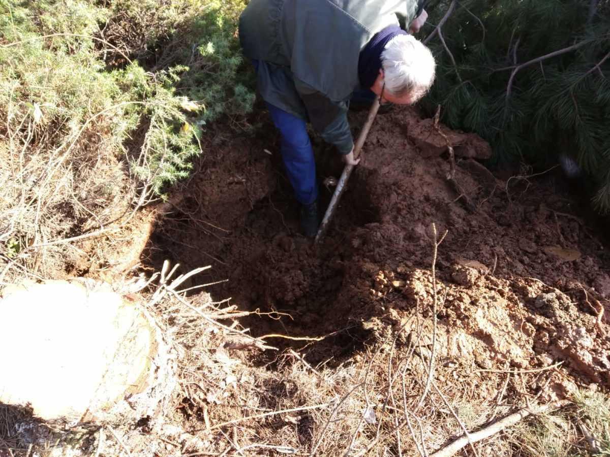 Καταγγελία πολιτών: Xωρίς υδροδότηση το μισό χωριό στην Βλάστη - Αδιαφορία από την ΔΕΥΑΕ για την αποκατάσταση της βλάβης (φωτογραφίες) 24
