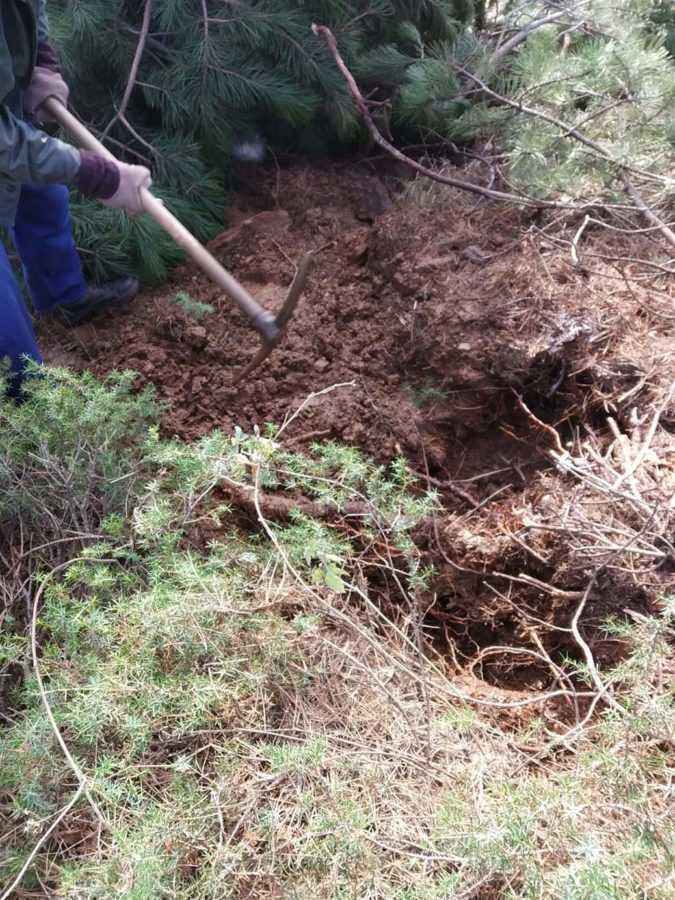 Καταγγελία πολιτών: Xωρίς υδροδότηση το μισό χωριό στην Βλάστη - Αδιαφορία από την ΔΕΥΑΕ για την αποκατάσταση της βλάβης (φωτογραφίες) 18