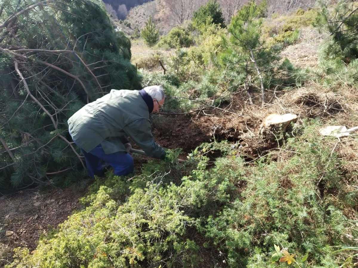 Καταγγελία πολιτών: Xωρίς υδροδότηση το μισό χωριό στην Βλάστη - Αδιαφορία από την ΔΕΥΑΕ για την αποκατάσταση της βλάβης (φωτογραφίες) 23