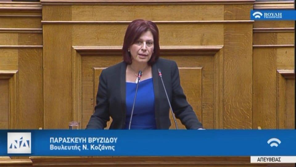 Ομιλία της Παρασκευής Βρυζίδου Βουλευτή Ν. Κοζάνης της Νέας Δημοκρατίας στην Ολομέλεια της Βουλής των Ελλήνων, κατά τη συζήτηση και ψήφιση του νομοσχεδίου του Υπουργείου Εργασίας και Κοινωνικών Υποθέσεων: «Επίδομα γέννησης και λοιπές διατάξεις» 1