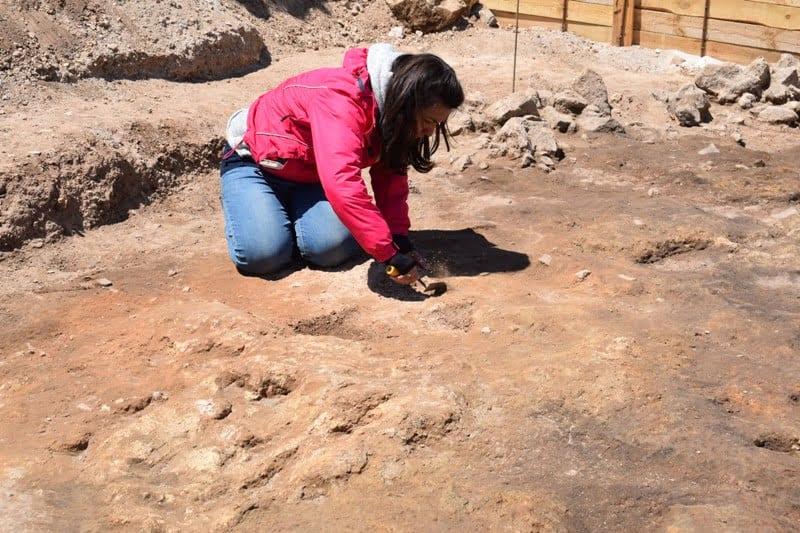 Δράση Εφορείας Αρχαιοτήτων Κοζάνης: «Αρχαιολογικό Μουσείο Αιανής: Τα παιδιά εμπνέονται και δημιουργούν!» 15