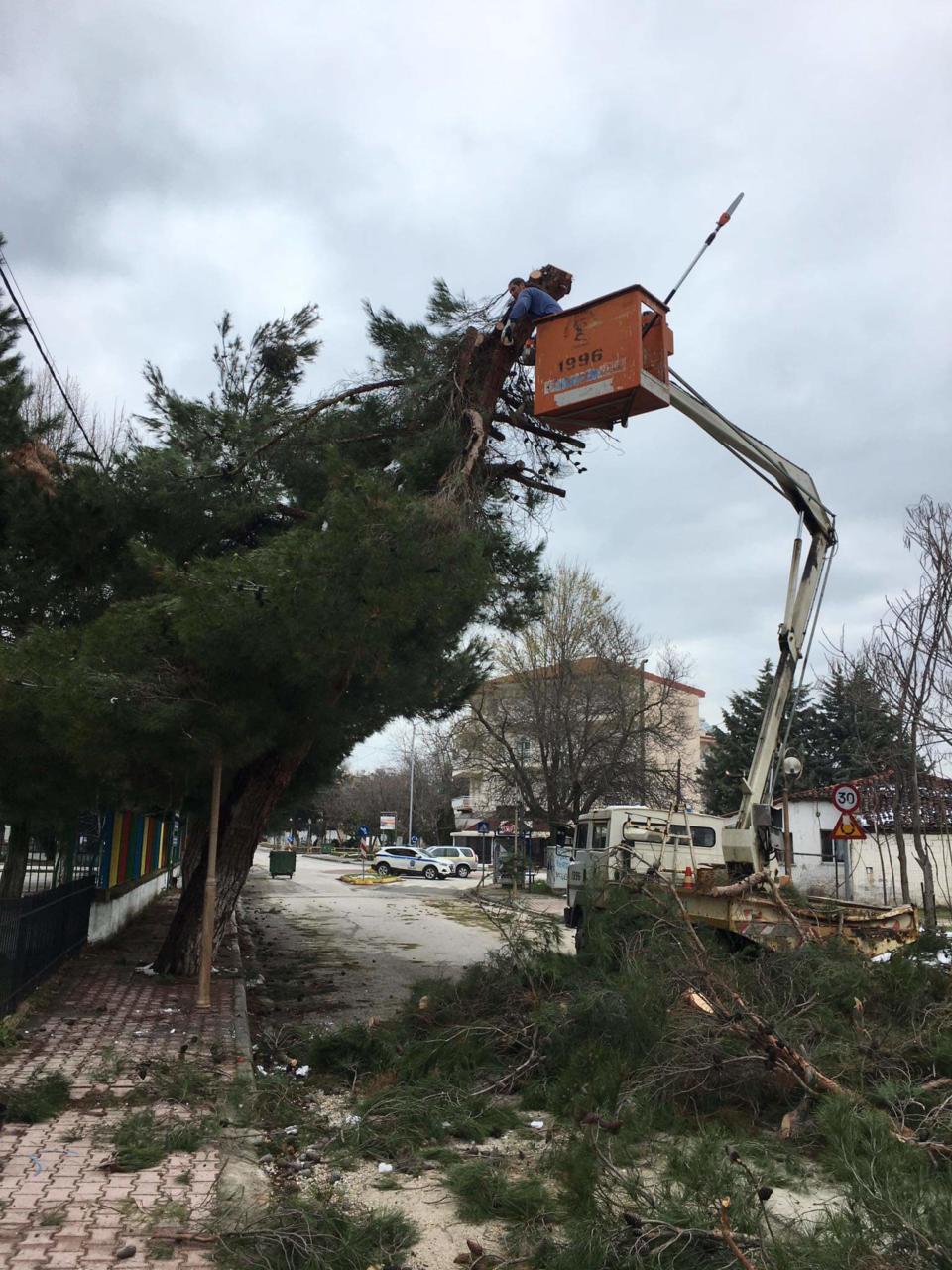 Εργασίες απομάκρυνσης των επικίνδυνων κλαδιών από δένδρα, που έσπασαν από την χιονόπτωση, ξεκίνησε ο Δήμος Εορδαίας.
