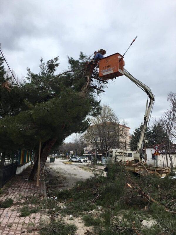 Εργασίες απομάκρυνσης των επικίνδυνων κλαδιών από δένδρα, που έσπασαν από την χιονόπτωση, ξεκίνησε ο Δήμος Εορδαίας. 2