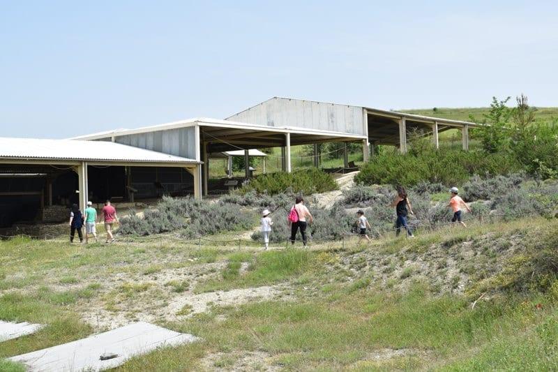 ΕΦΑ ΚΟΖΑΝΗΣ : Επαναλειτουργία Αρχαιολογικού Χώρου Αιανής 12