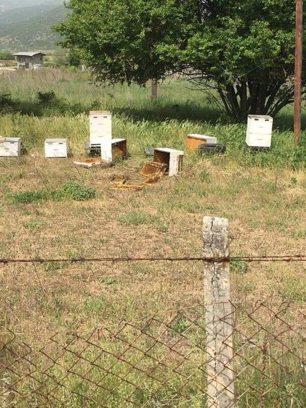 Εορδαία: Επίθεση σε εγκαταστάσεις δύο Μελισσοκόμων 7