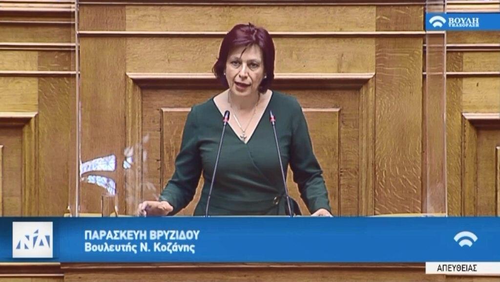Ομιλία Παρασκευής Βρυζίδου, Βουλευτή Ν. Κοζάνης στην Ολομέλεια της Βουλής για το σχέδιο νόμου του Υπουργείου Οικονομικών, με θέμα: «Πλαίσιο χορήγησης μικροχρηματοδοτήσεων, ρυθμίσεις χρηματοπιστωτικού τομέα και άλλες διατάξεις»