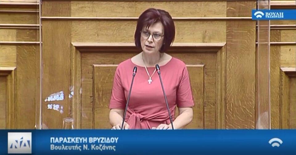 Παρασκευή Βρυζίδου Βουλευτής Ν. Κοζάνης εισηγήτρια της Νέας Δημοκρατίας του σ/ν του Υπουργείου Υγείας στην Ολομέλεια της Βουλής στις 01/07/2020