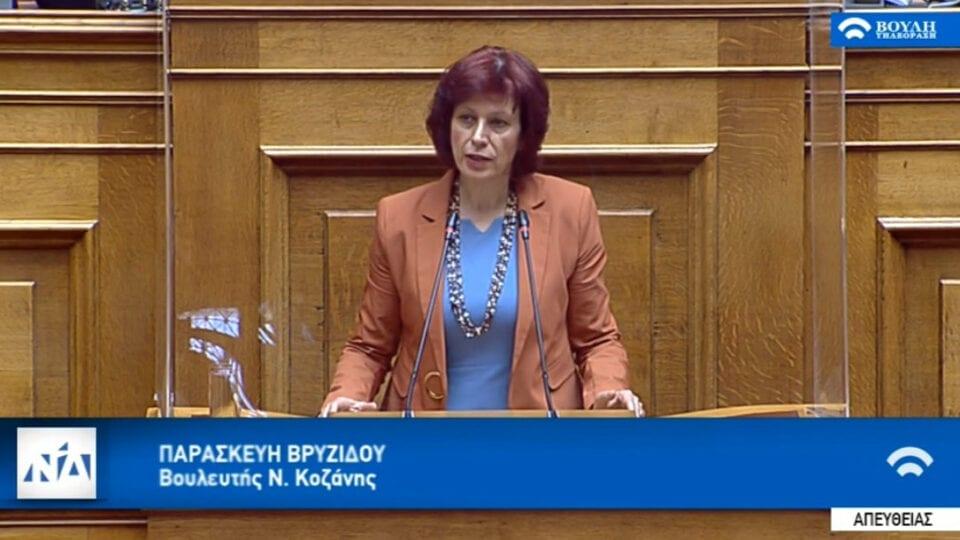 Π. Βρυζίδου:Επιστολή προς το Υπουργείο Οικονομικών για το επίδομα θέρμανσης για καυσόξυλα και πέλετ και το πρόβλημα που προέκυψε στην ΠΕ Κοζάνης