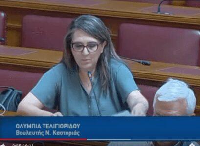 Ολυμπία Τελιγιορίδου: Παραπλανεί τη Βουλή και τον ελληνικό λαό ο κ. Βορίδης