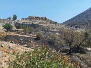 Aντιπροσωπεία του ΣΥΡΙΖΑ – Προοδευτική Συμμαχία στον αρχαιολογικό χώρο των Μυκηνών 27