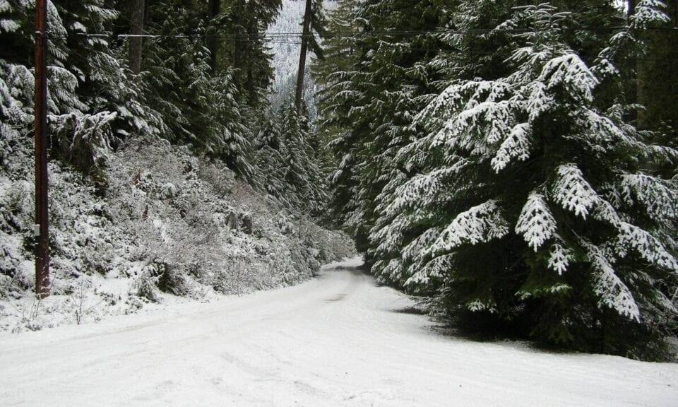 Μερομήνια 2020 - 2021: Βγήκαν και δείχνουν βαρυχειμωνιά και χιονισμένα Χριστούγεννα