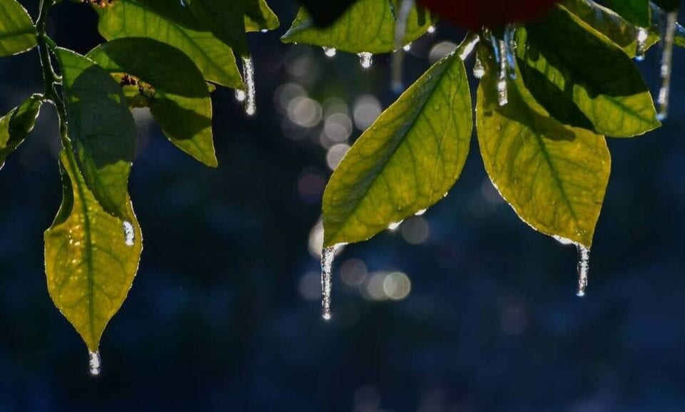 ΣτηΒλάστη Εορδαίαςσημειώθηκε η πρώτη αρνητική ελάχιστη θερμοκρασία