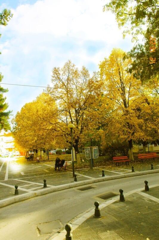 Πτολεμαΐδα: Φθινόπωρο εις την Πόλιν:«φθίνει(λιγοστεύει) +οπωρών (κτήμα με φρούτα)» (φωτογραφίες) 5