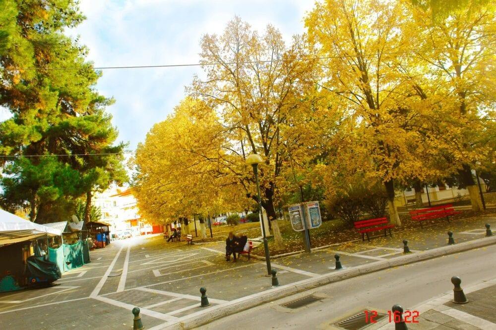 Πτολεμαΐδα: Φθινόπωρο εις την Πόλιν:«φθίνει(λιγοστεύει) +οπωρών (κτήμα με φρούτα)» (φωτογραφίες) 6