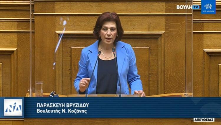"""π. βρυζίδου: ομιλία στην ολομέλεια της βουλής για το ν/σ του υπουργείου παιδείας """"εισαγωγή στην τριτοβάθμια εκπαίδευση, προστασία της ακαδημαϊκής ελευθερίας, αναβάθμιση του ακαδημαϊκού περιβάλλοντος και άλλες διατάξεις"""""""