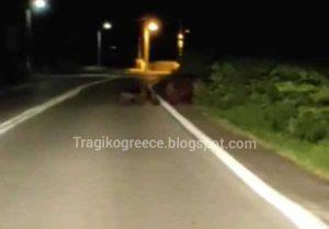 Αρκούδα με τρία μικρά αρκουδάκια έκανε την εμφάνισή της στο δρόμο στην περιοχή της Πέτρας.Δείτε βίντεο.Πηγή:tragikogreece.blogspot.com