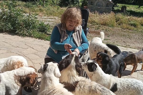 Η κ. Σούλα της Καστοριάς, φροντίζει 34 αδέσποτα! (Φώτο)