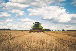 ΕΛΓΑ: Αποζημιώσεις ύψους 6 εκατ. ευρώ σε αγρότες και κτηνοτρόφους