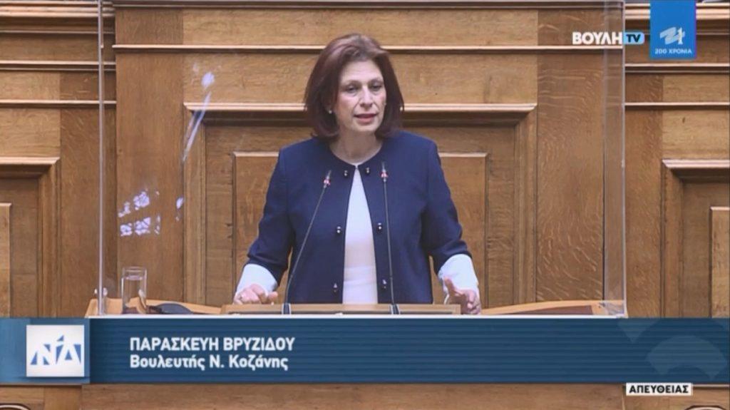 Ομιλία Π. Βρυζίδου για την «Εκλογή Δημοτικών και Περιφερειακών Αρχών» στην Ολομέλεια της Βουλής.