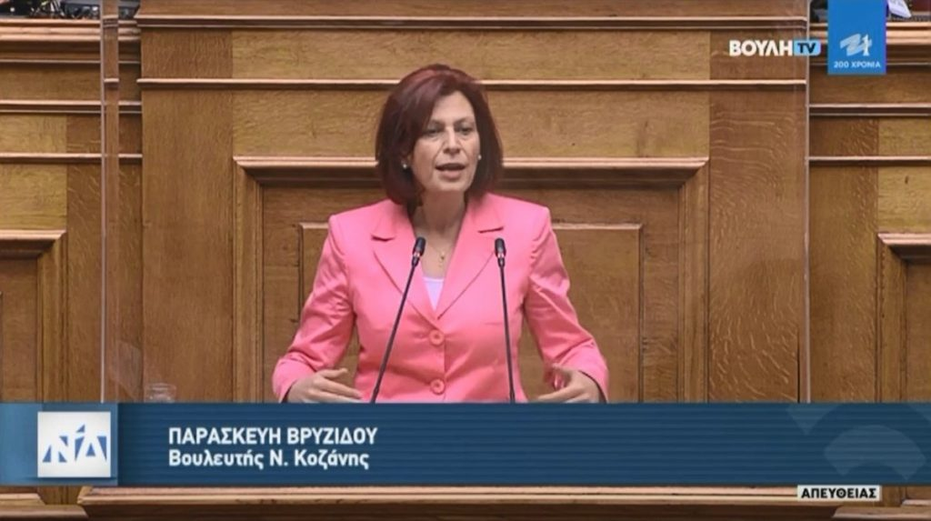 Ομιλία Π. Βρυζίδου «Για την Προστασία της Εργασίας» στην Ολομέλεια της Βουλής