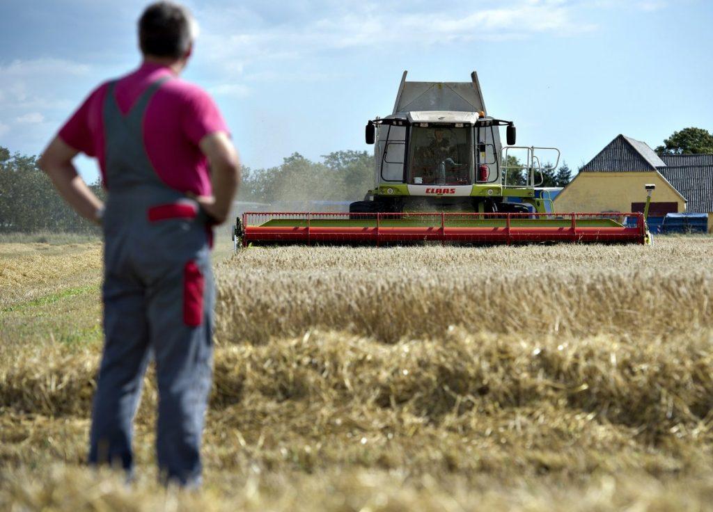 e-ΕΦΚΑ: Ποιες είναι οι 11 ηλεκτρονικές υπηρεσίες προς τους αγρότες