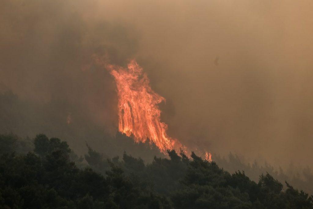 Καστοριά: Νέα πυρκαγιά στο Γράμμο – Έρευνα για εμπρησμό