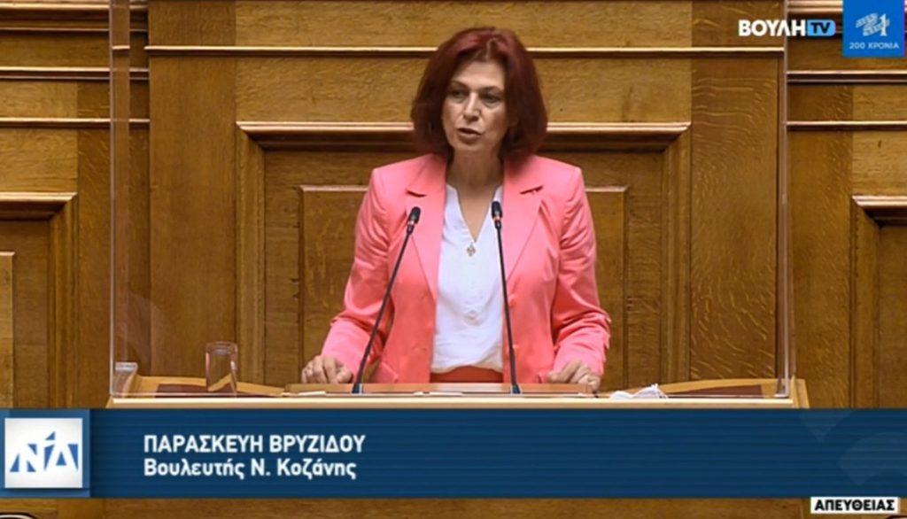 «Ομιλία Π. Βρυζίδου στο ν/σ για το έργο του Βόρειου τμήματος του Αυτοκινητόδρομου Κεντρικής Ελλάδος-Ε65 στην Ολομέλεια της Βουλής»
