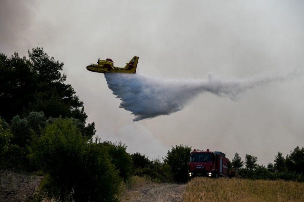 Καστοριά: Πυρκαγιά σε δασική περιοχή του Γράμμου
