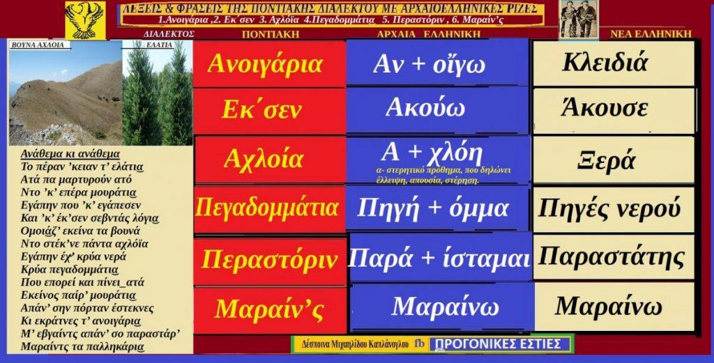Λέξεις και φράσεις της Ποντιακής διαλέκτου με αρχαιοελληνικές ρίζες: 1.Ανοιγάρια ,2. Εκ΄σεν 3. Αχλόϊα, 4.Πεγαδομμάτι͜α 5. Παραστάρ
