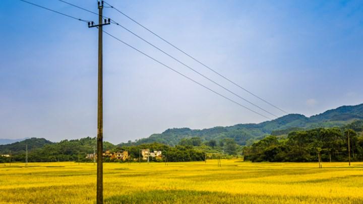 Αγροτικό τιμολόγιο: Νέο πρόγραμμα διακανονισμού οφειλών