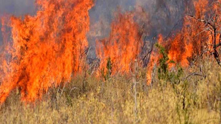 Τι λέει ο δικηγόρος του ταξίαρχου για το «πολιτικό μέσο» και το πυροσβεστικό όχημα
