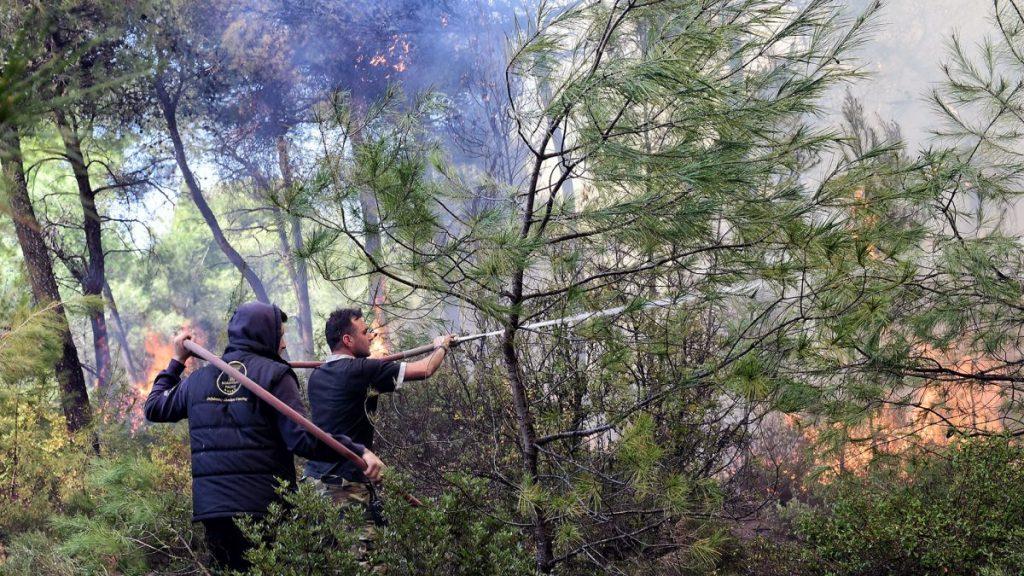 Γρεβενά: Περιορίστηκε το μέτωπο στο Φελλί