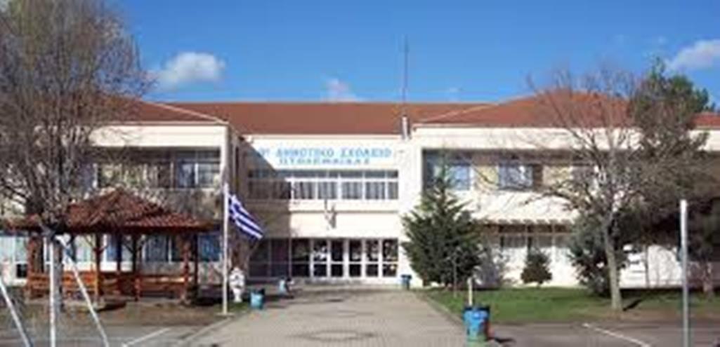 """Πτολεμαΐδα: 1ο Ευρωπαϊκό βραβείο e-twinning στο 8ο Δημοτικό Σχολείο – """"Υιοθέτησαν"""" τον Γεροπλάτανο των Πύργων"""