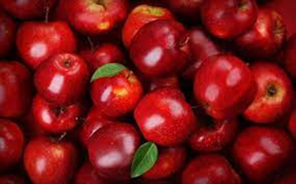 Εορδαία: Oι ανατιμήσεις στα γεωργικά εφόδια προβληματίζουν τους μηλοπαραγωγούς