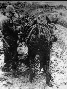 ΔΙΑΣΧΙΖΟΝΤΑΣ ΤΑ ΘΟΛΑ ΝΕΡΑ ΤΟΥ ΑΩΟΥ ΠΟΤΑΜΟΥ ΕΛΛΗΝΟ-ΙΤΑΛΙΚΟΣ ΠΟΛΕΜΟΣ - ΑΛΒΑΝΙΚΟ ΕΠΟΣ 1940
