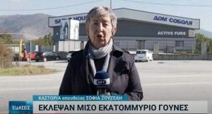 Καστοριά; Έκλεψαν γούνες αξίας 500.00 ευρώ Κλοπή γουναρικών στην Καστοριά – Δείτε το ρεπορτάζ της ΕΡΤ – ΒΙΝΤΕΟ
